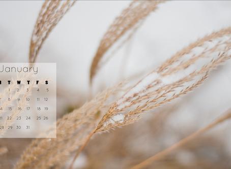January 2019 Background | Free iPhone & Desktop Wallpaper Download