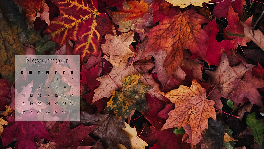 beautiful fall leaves desktop wallpaper November 2018 calendar free download