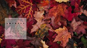 beautiful fall leaves desktop wallpaper November 2018 calendar free download