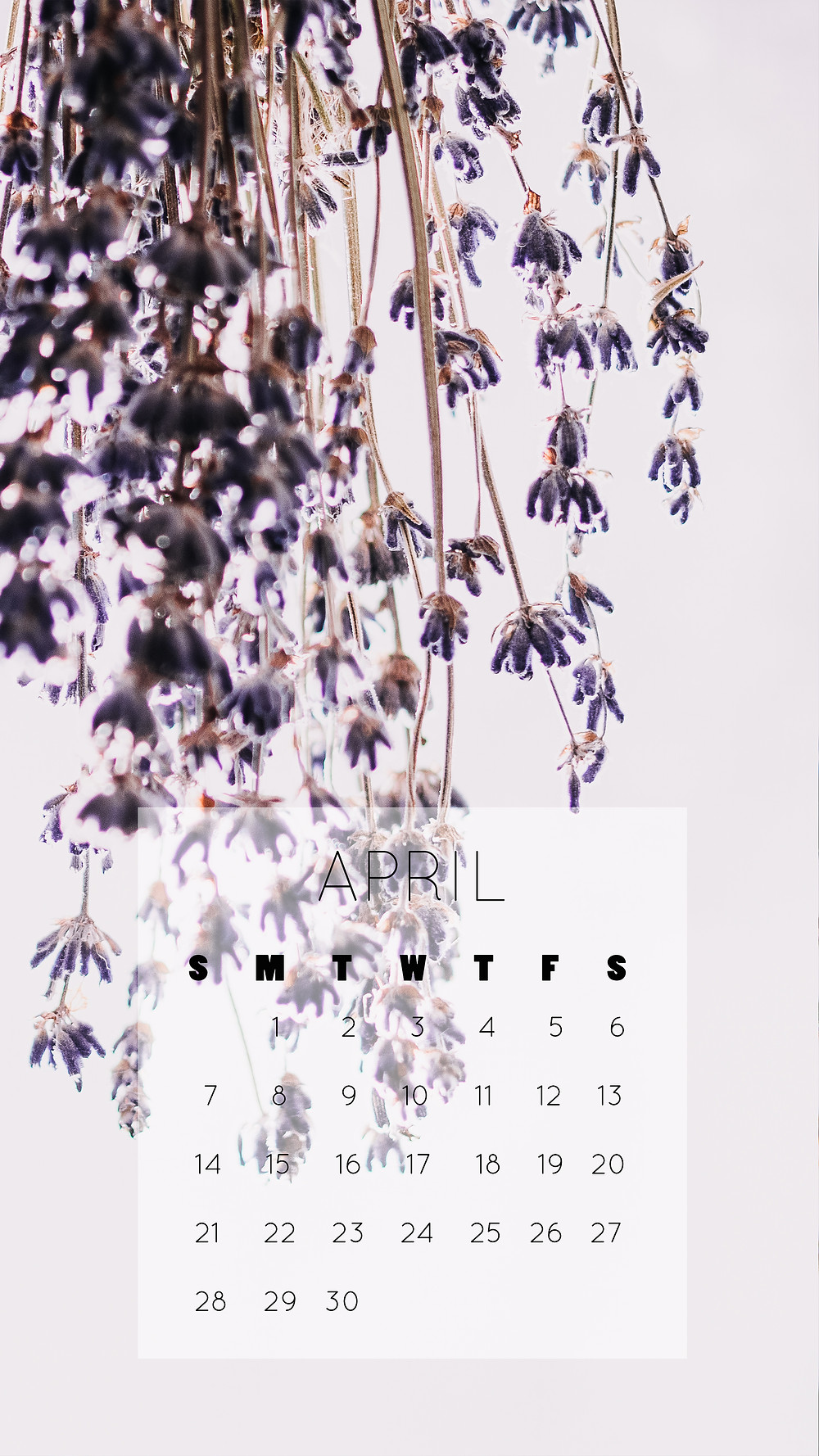 free april 2019 spring lavender phone wallpaper