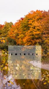 colourful fall trees iphone wallpaper November 2018 calendar free download