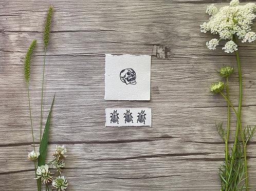 Skull & Beetle mini set