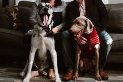 family-pet-photography-glencoe