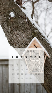 January 2019 Free iphone wallpaper download