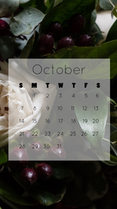 October 2018 calendar free download for iPhone 7