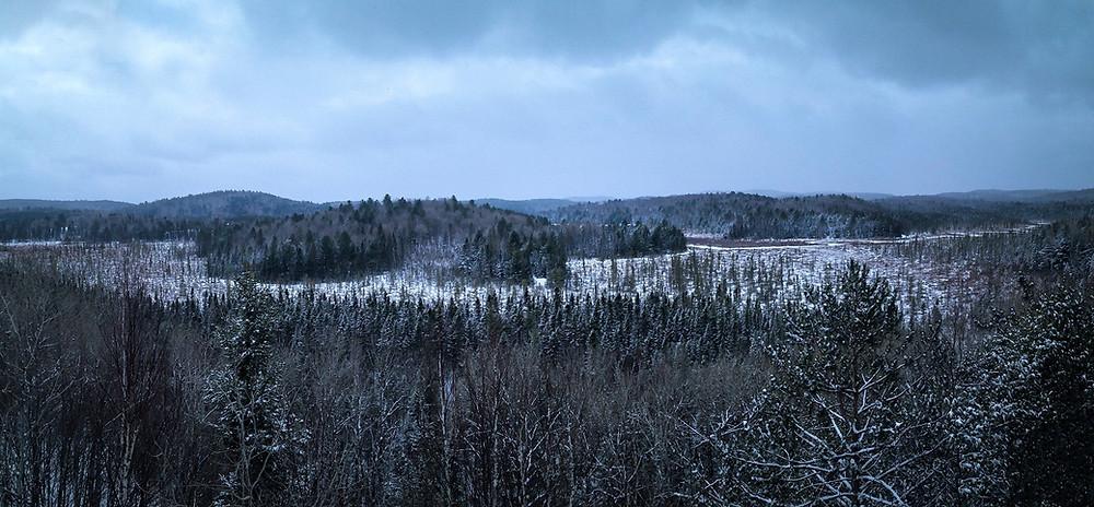 winter wonderland algonquin park ontario canada