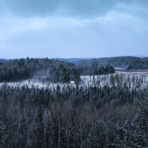 Winter Wonderland December Background   Free iPhone & Desktop Wallpaper Download
