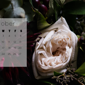 October 2018 Calendar Background | Free iPhone & Desktop Wallpaper Download