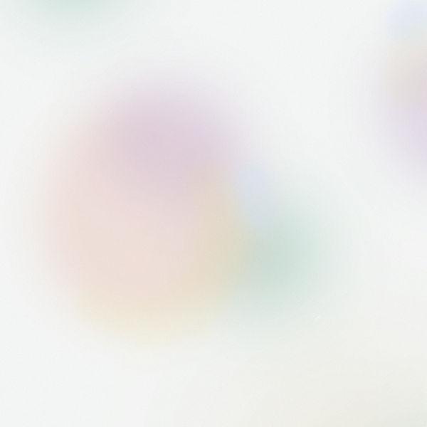 background_edited.jpg