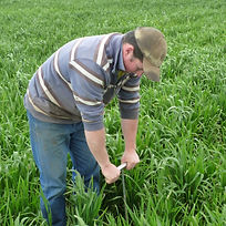 Will hurse checking how much moisture fo