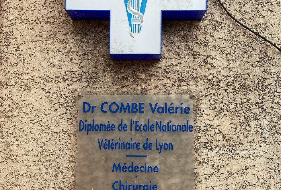 Clinique vétérinaire : Vet Biot