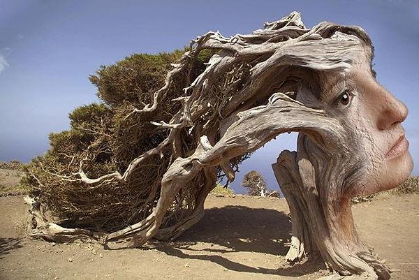 Sab(r)ina #art #tree #youngwoman #islas