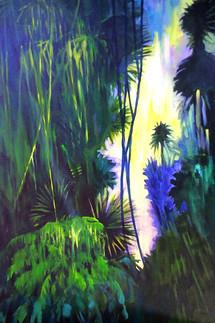 Rainforest Morning_edited.jpg