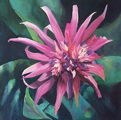 Pink Bromeliad.jpg