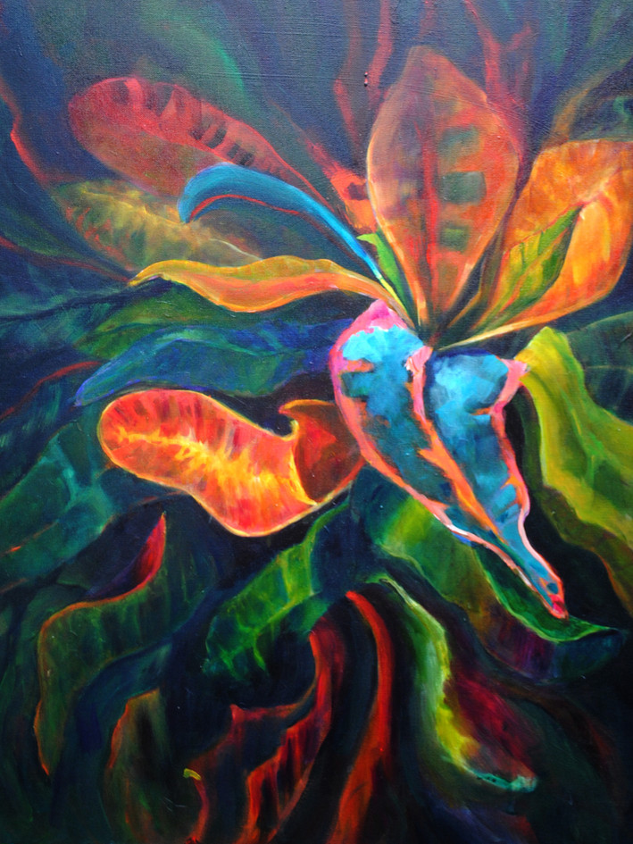Colorful Croton