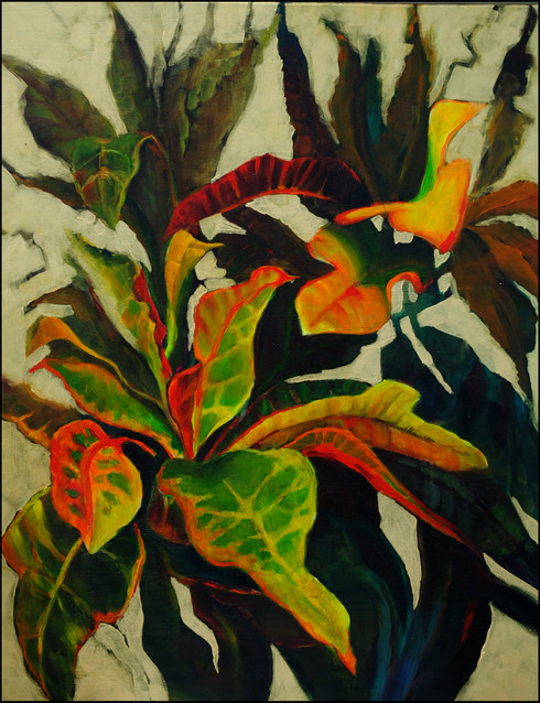 Croton 1