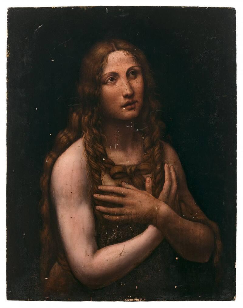Leonardo da vinci art expert