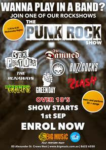The Punk Rock Show