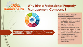 Why hire a Professional Property Management Company?