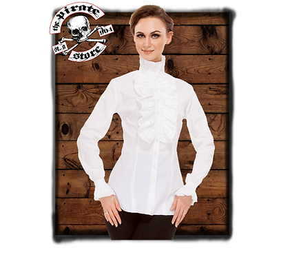 Zylphia Stand-up Collar Blouse