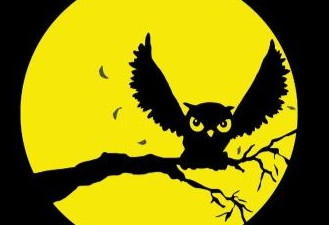HOOTY HOO PRODUCTIONS OPTIONS FEATURE FILM SCRIPT LODGED