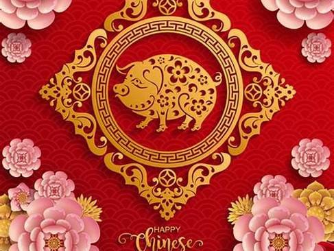 【KOOLOOK】 《金豬報喜迎新年》