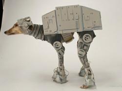 dog costume9.jpg