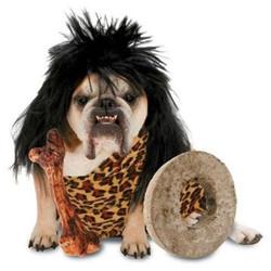 dog costume1.jpg