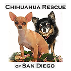 Chihuahua Rescue of San Diego