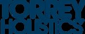Torrey 2019 Stacked Logo Large 1213 x 49