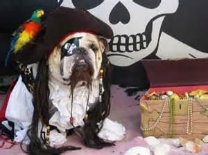 dog costume10.jpg