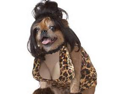 dog costume6.jpg