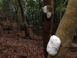 鈴木隆さんの森の目