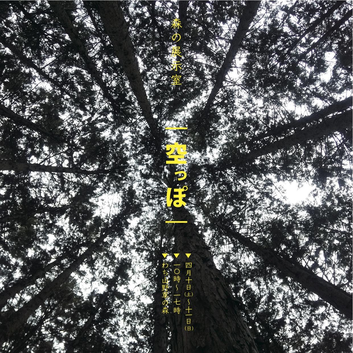 森の展示室 A4変形表out