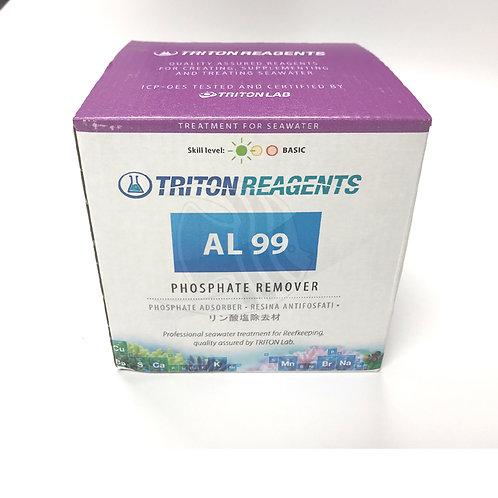 Triton Treatment -P04 Remover 1 litre