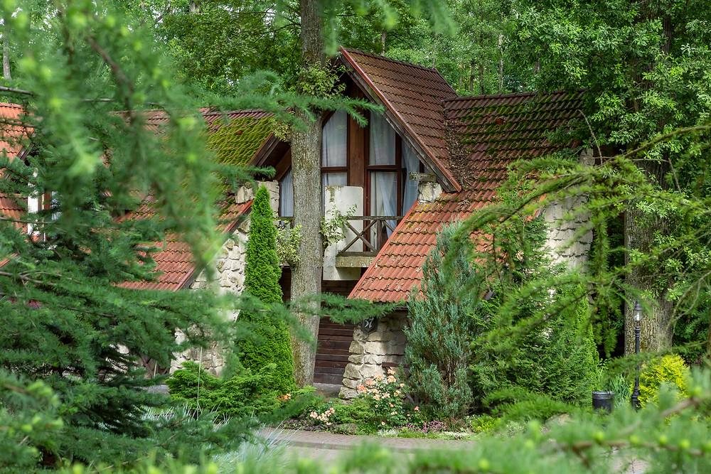 Зйомка готелю у лісі