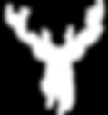 Logo_XXL_weiß3.png