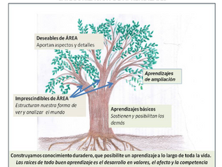 En educación, menos (bien seleccionado y bien aprendido) siempre es más. SERIE NUEVO CURRÍCULO (2)