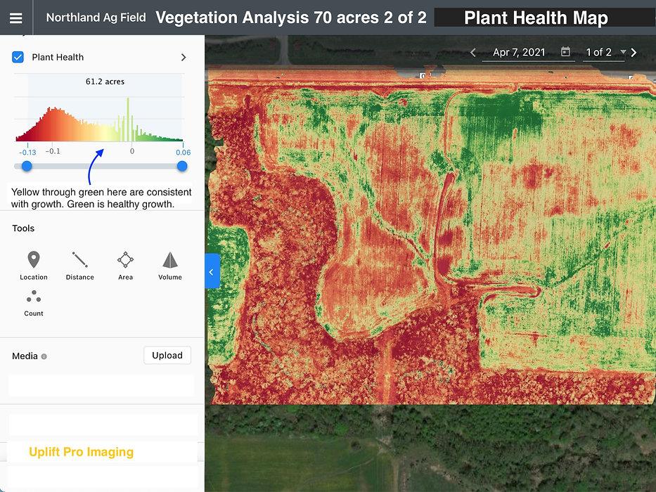 Vegetation Analysis 4