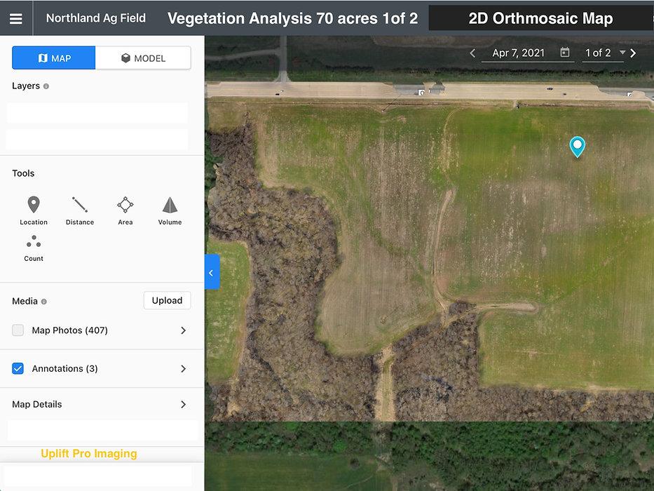 Vegetation Analysis 3