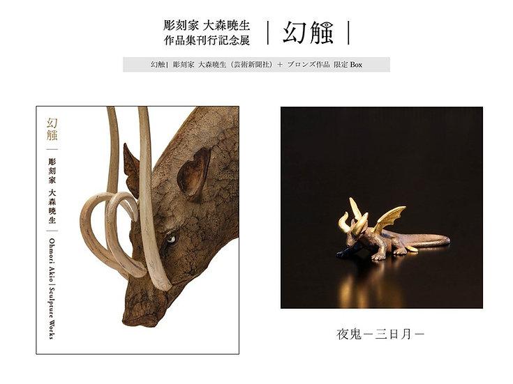 作品集 幻触   彫刻家 大森暁生 + 新作ブロンズ作品「夜鬼ー三日月ー」限定ボックス