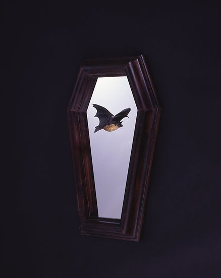 Bat in the frame (Type-A)
