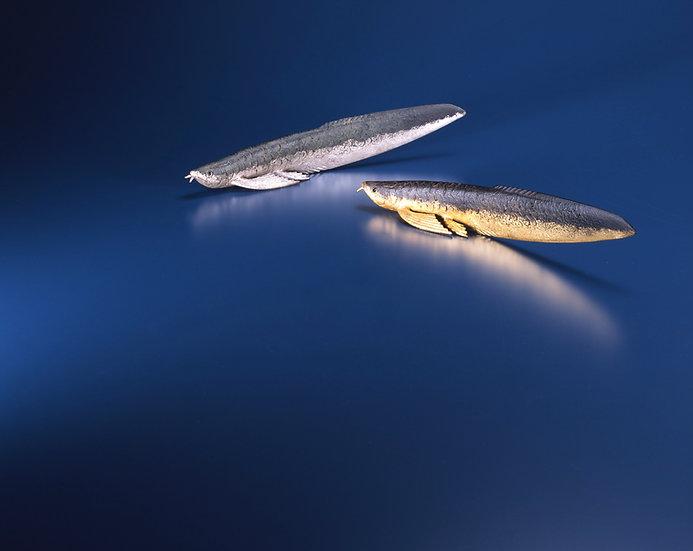 月夜のレターオープナー-Arowana- 緑×銀 ※写真左