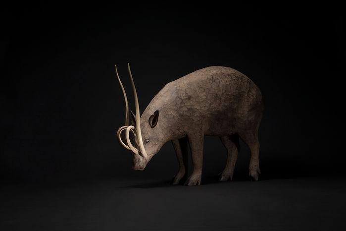 死に生ける獣 - Babirusa -