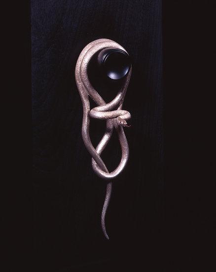 間守の白蛇
