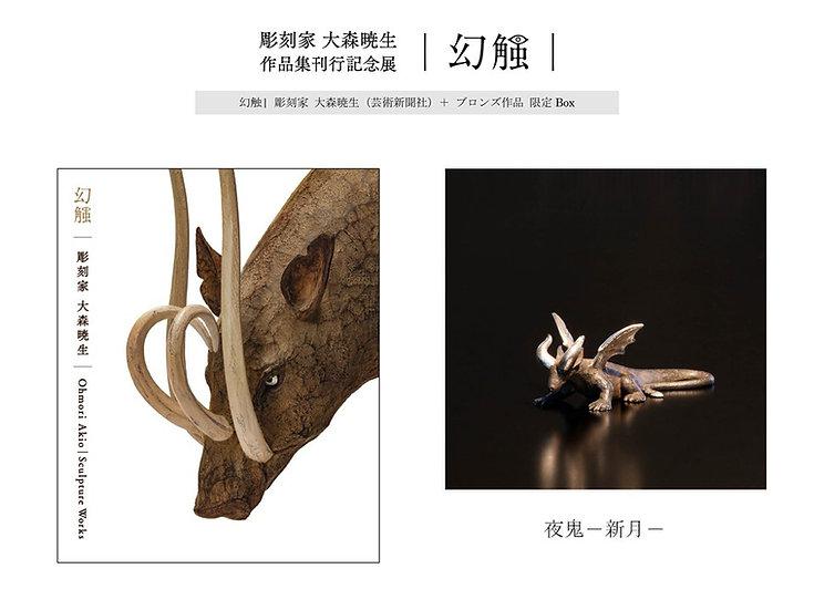 作品集 幻触 | 彫刻家 大森暁生+新作ブロンズ作品「夜鬼ー新月ー」限定ボックス