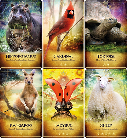 The Ark Animal Tarot & Oracle Deck 6.png