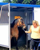Horse Transporter