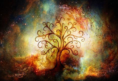 Paid tree of life pic.jpeg