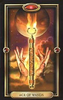 ace of wands gilded tarot.jpg